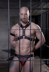 "Harness ""Bi color"" 4 cm N°4110"