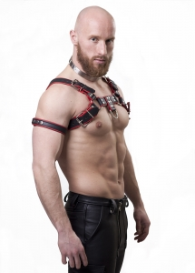 "Harness ""Bi color"" 4 cm N°4117 R"