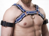 "Harness ""Exclusiv"" Tri color N°4123"